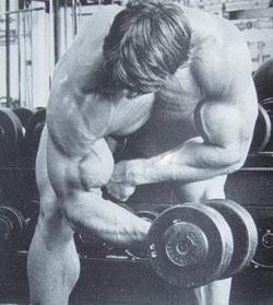 Arnold Schwarzenegger Concentration Dumbbell Curl