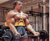 Arnold's Bicep Workout